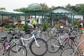 bikes at gardens pic